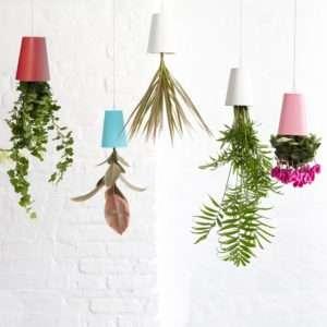 Regalo Sky Planter – Il vaso sottosopra