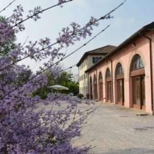 Idea regalo Soggiorno con cena – Ponte di Piave, Treviso
