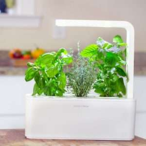 Idea regalo Click & Grow  giardino smart