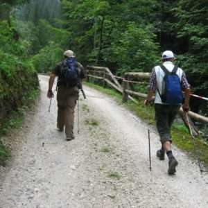 Idea regalo Corso di Nordic Walking – Trentino a 60 €