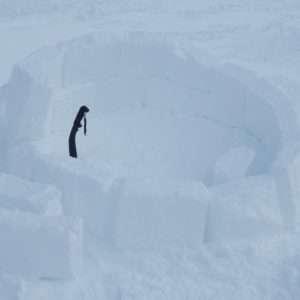 Idea regalo Costruire un igloo | Parco Nazionale del Gran Sasso