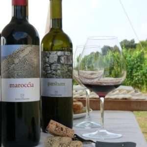 Idea regalo Degustazione vini e prodotti tipici – Castellabate
