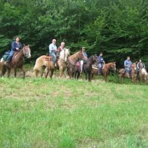 Idea regalo Passeggiata storica a cavallo per due persone – Castel d`Aiano a 100 €