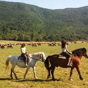 Idea regalo Escursione a cavallo – Parco d`Abruzzo a 39 €