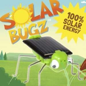 Idea regalo Insetti solari