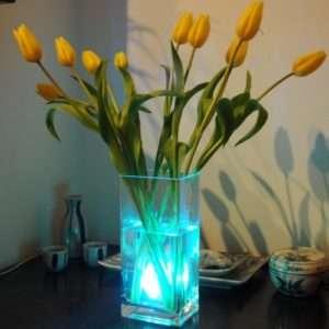 Idea regalo Luce cambia colore Impermeabile a 24 €