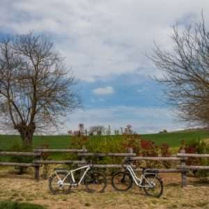 Idea regalo Escursione enogastronomica in bici – Monferrato a 45 €