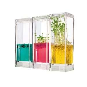 Regalo Piccolo laboratorio per piante