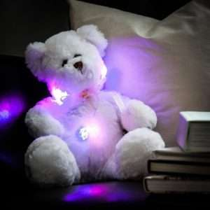 Idea regalo Orsacchiotto Luminoso a 19 €