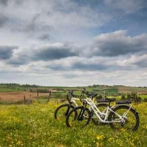 Idea regalo Tour paesaggistico in bici nel Monferrato – Alessandria a 45 €