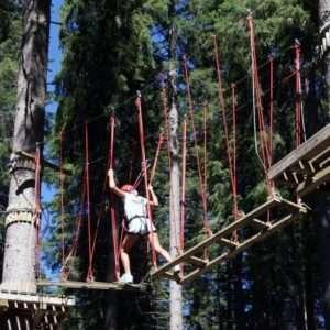 Idea regalo Percorsi di coppia Tra le fronde degli alberi – Trentino a 34 €