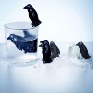 Idea regalo Pinguini Refrigeranti