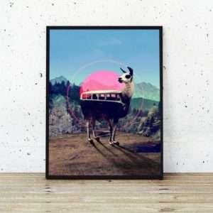 Idea regalo Poster Lama di Ali Gulec a 24 €