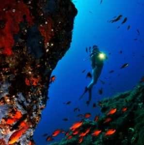 Idea regalo Battesimo del mare – Isola d`Elba