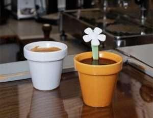 Regalo Set due tazzine + cucchiaino – Vasi di fiori