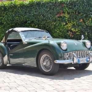 Idea regalo Noleggio di un`auto d`epoca a scelta – Parma a 250 €