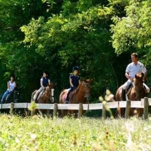Idea regalo Battesimo della sella: la prima volta a cavallo – Mantova