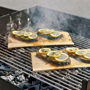 Idea regalo Griglia per barbecue American style – Set x 2
