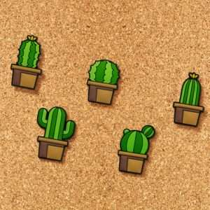 Idea regalo Puntine Cactus