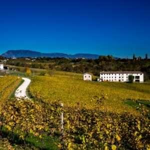 Idea regalo Degustazione vino per due persone – Valdobbiadene, Treviso