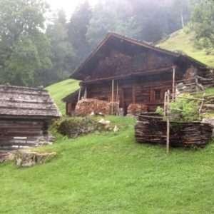Idea regalo Escursione di gruppo di Nordic Walking (min. 4 persone) – Trentino