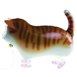 Idea regalo Palloncino a elio Gatto