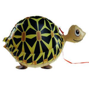 Idea regalo Palloncino a elio Tartaruga