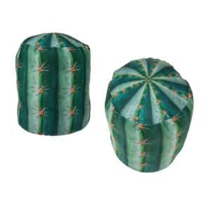 Idea regalo Fermaporta cactus in stoffa