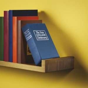 Idea regalo Dizionario Cassaforte