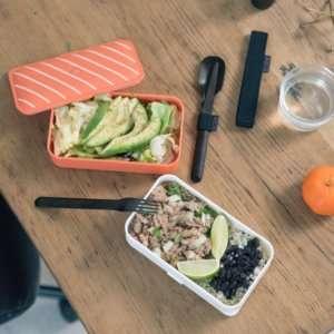 Regalo Lunch box Sushi