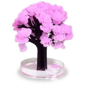 Idea regalo Magic Sakura