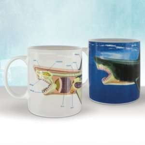 Regalo Mug termosensibile Squalo